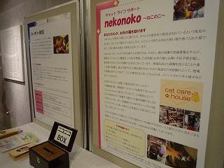hujiko02